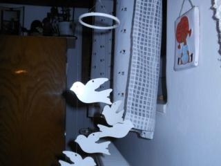 Elfi's duifjes in mijn logeerkamer bij Éva thuis.